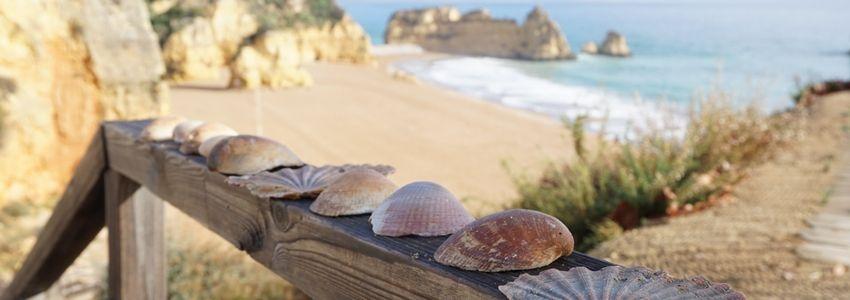 Faro Rejseguide – Bedste attraktioner og anbefalinger